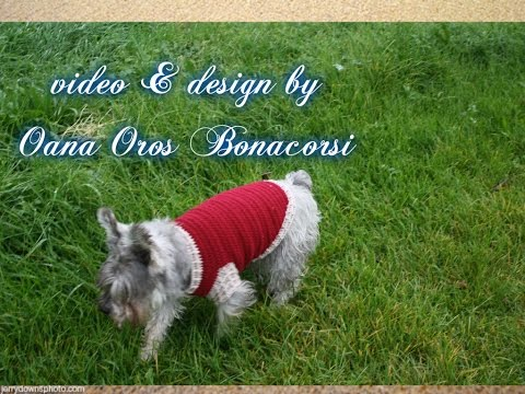 crochet dog sweater I