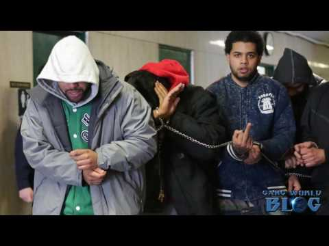 Cops take down Washington Heights, Bronx gang members Blood Hound Brims