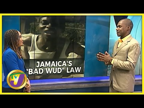 Jamaica's Bad Wud Law | TVJ News - July 27 2021