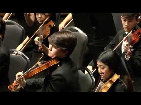 2017 TMEA All-State String Orchestra - Elegy