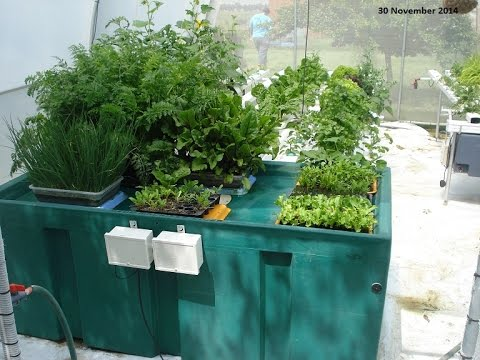 Grow Machines Hydroponic Peace Garden for the Home Grower