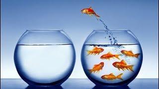 Define your Success | Successful vs Unsuccessful | Motivation