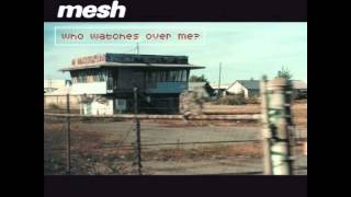 Mesh - The Trouble We