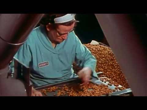 HOW IT'S MADE: Hershey's Chocolate (720p HD)