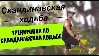 Тренировка по скандинавской ходьбе. Советы тренера