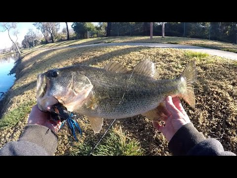 Fishing For Pre-Spawn And Spawning Bass-Santee Lakes