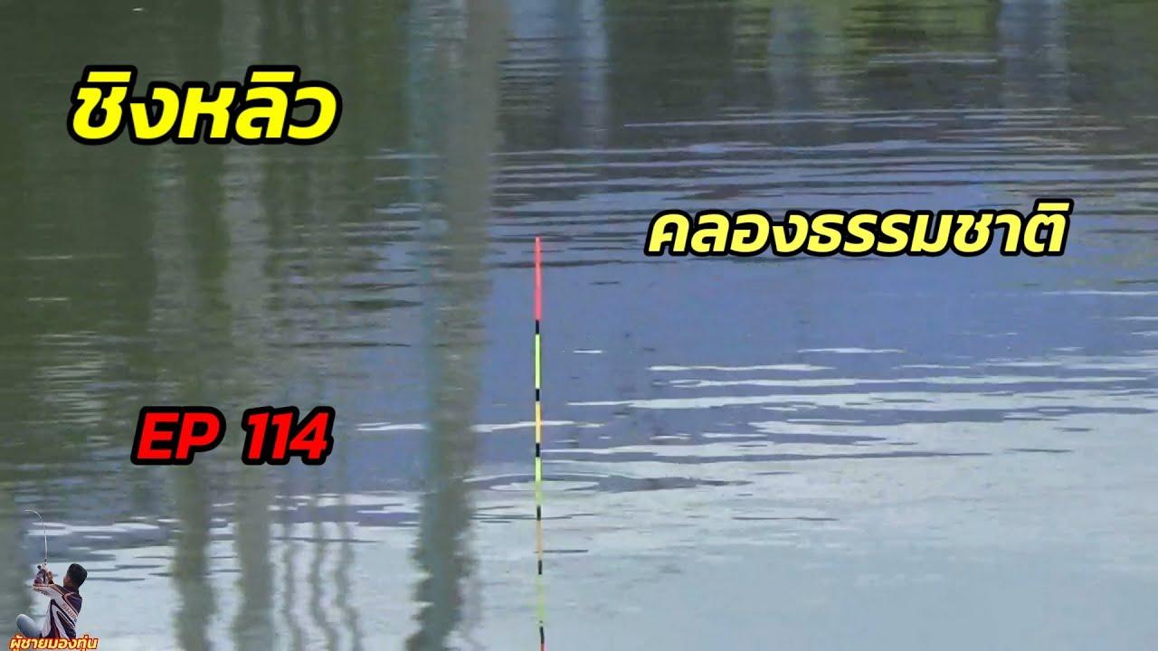 ตกปลาคลองธรรมชาติด้วยชิงหลิว EP 114