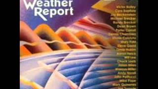 Weather Report tribute album-man in the green shirt