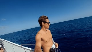 Scuba Diving the Great Barrier Reef on Christmas Day (instagram video)