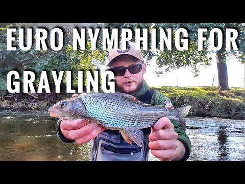 Wild Fly Fishing In The UK For Trout & Grayling With French Euro Leader