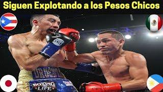 Bolsas Económicas de Gallo Estrada vs Orucuta  Arroyo vs Ioka y Nietes vs Palicte #SuperFly3