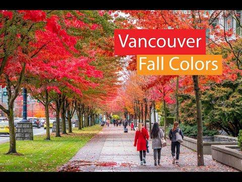 Vancouver Canada Falls Autumn Colors | Fall Foliage
