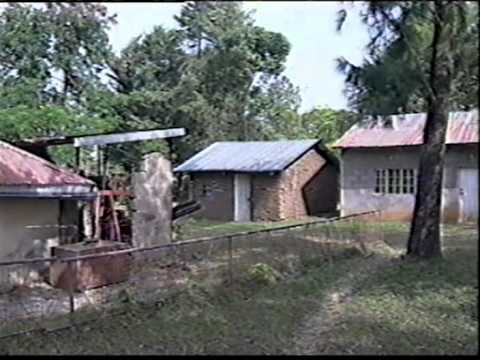 Irene Ayieko Distributorship Business Story in Kenya between 1994-May of 2002