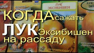 Выращивание Лука Эксибишен на Рассаду. Советы от Зеленого Огорода.
