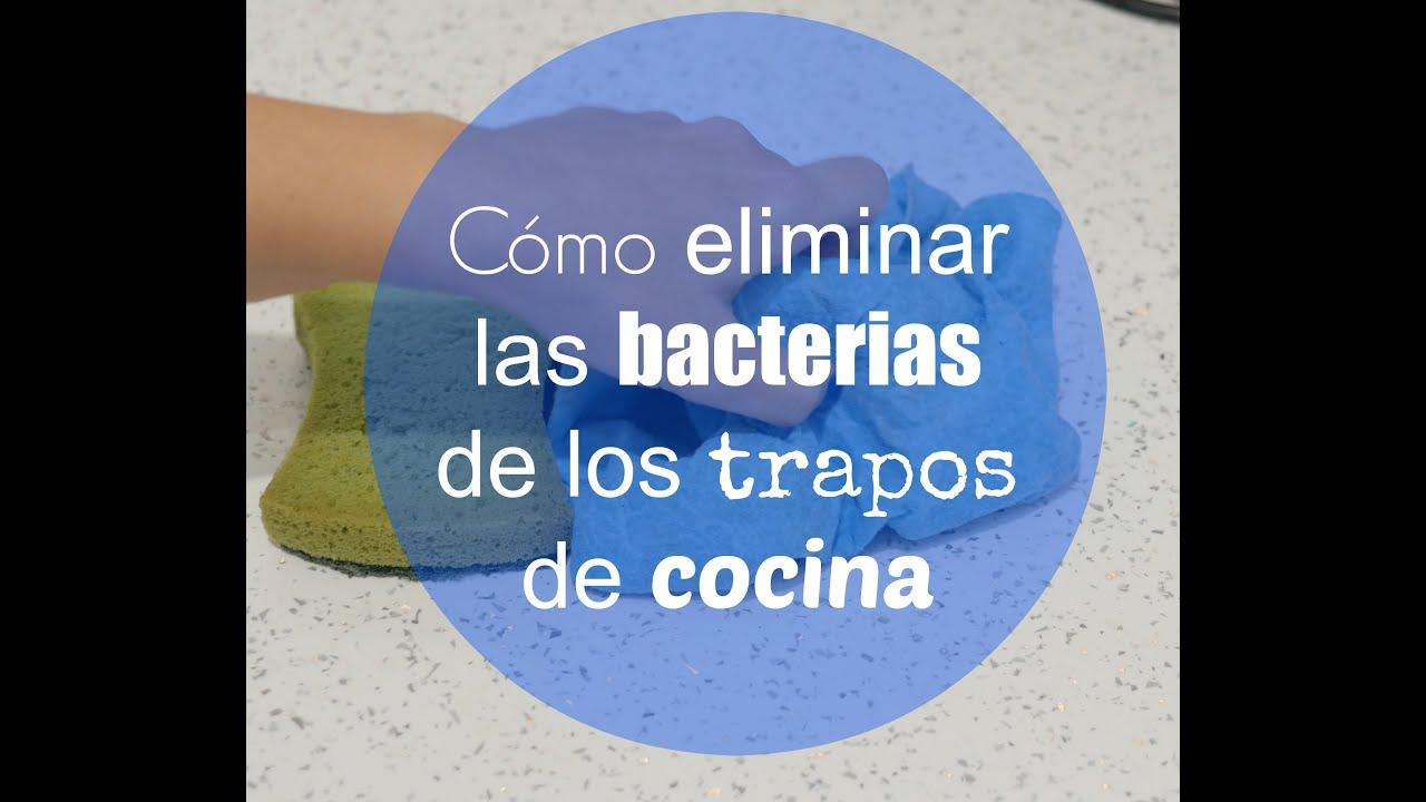 C mo eliminar las bacterias de los trapos de cocina youtube - Trapos de cocina ...