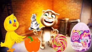 Falando Gato Vídeo Engraçado | Gatos Falando Engraçados | Aprenda Colours Crianças #29