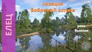 Русская рыбалка 4   река Вьюнок   Елец за островком