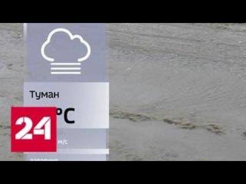 Москва оказалась во власти аномального потепления - Россия 24