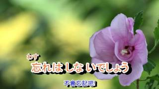 01-003  離別(イビョル)***江蕙~~(寄語白雲.西風的話)    音緣 43428/2332 金嗓 41008 thumbnail