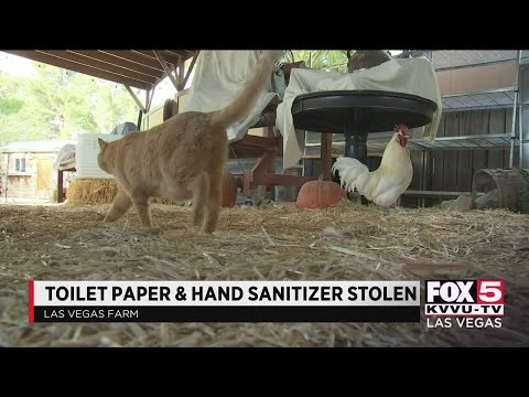 Sanitary Items Stolen From Las Vegas Farm