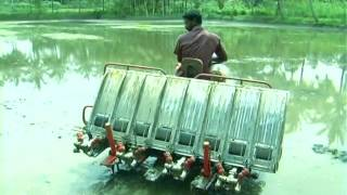 Copy of Rice Transplanter India | CHAMPION RP 824 | Redlands Ashlyn Motors Plc