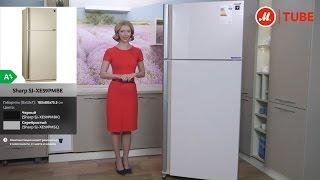 Видеообзор холодильника Sharp SJ XE59PMBE с экспертом «М.Видео»(, 2016-12-08T17:44:31.000Z)