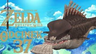 KRWIOŻERCZA MOLDUGA - The Legend of Zelda: Breath of the Wild #37