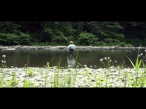The Freshwater Trust: Hank Catches a Fish