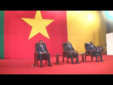 Cameroon opens national peace dialogue without separatists
