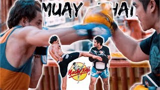 Video THE BEST MUAY THAI ACADEMY IN THAILAND | MASTER TODDY'S MUAY THAI ACADEMY download MP3, 3GP, MP4, WEBM, AVI, FLV Agustus 2018