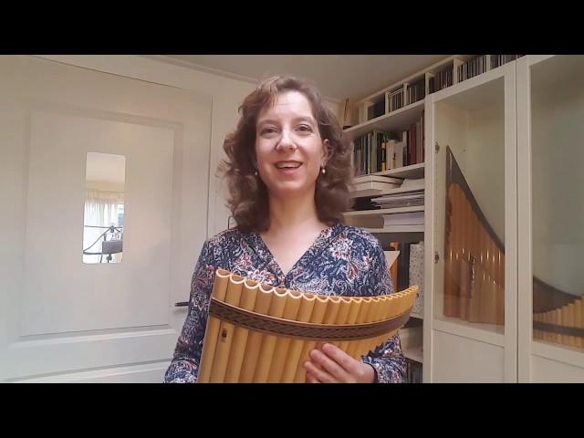 De tenor panfluit: een goed begin