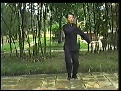 Thai Cuc Quyen 24 thuc/Green Taichi/ Tai chi/Duong Gia/ Yang Style