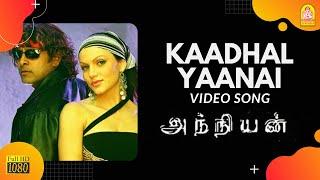 Kadhal Yaanai - HD Video Song | Anniyan | Vikram | Shankar | Harris Jayaraj | Ayngaran