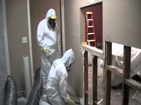 mold-remediation-in-schools,-commercial-buildings-and-homes,-asbestos-ottawa