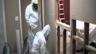 Mold Remediation in Schools, Commercial Buildings and Homes, asbestos ottawa