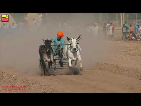 KUTHA KHERI (Patiala) ਬੈਲ ਗੱਡੀਆਂ ਦੀਆਂ ਦੌੜਾਂ / OX RACES [ May-2019 ] 🔴 Shift 3 || Part 3rd