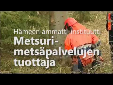 Metsuri-metsäpalvelujen tuottaja, Hämeen ammatti-instituutti, Evo