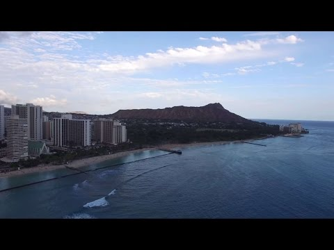 UH Productions Presents: Honolulu Scene 2016