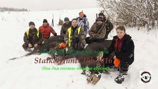 Загонная охота на лосей StalkerHuntClub 2016  полная версия