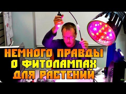Немного правды о Led фитолампах Е27 (лампы для растений)