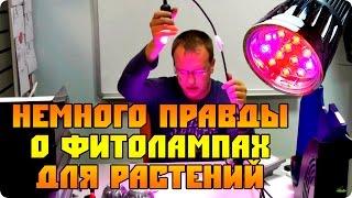 Немного правды о Led фитолампах Е27 (лампы для растений)(В этом видео мы постарались показать от чего зависит качество светодиодных фитоламп и почему одни стоят..., 2015-08-26T10:01:34.000Z)