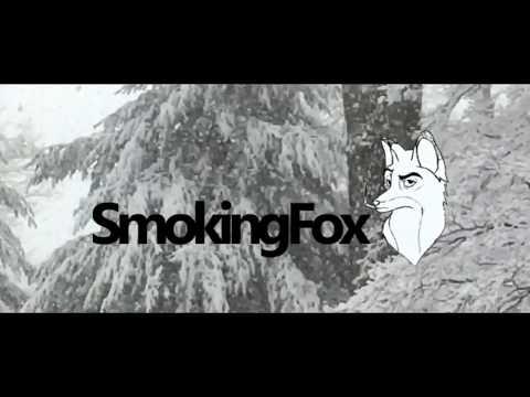 Smoking Fox - Reduce Energy Consumption