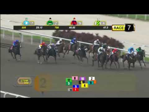 Singapore 20170910 Race 7 - CONSTANT JUSTICE got the 3 wide