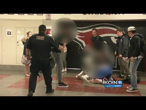 Watch: School officer breaks up Lincoln HS fight