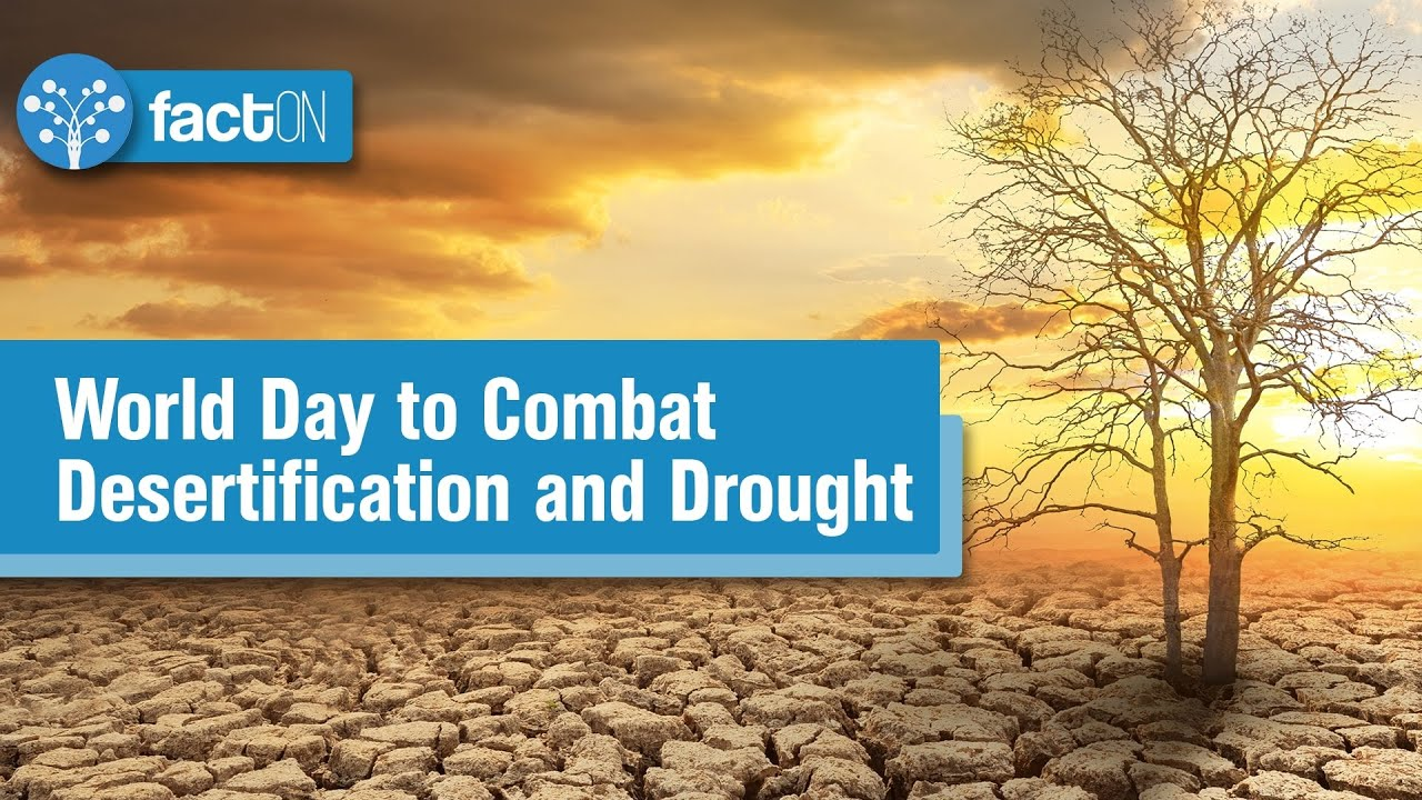 World Day to Combat Desertification and Drought | Fight Against Desertification | WDCDD | SDG Plus