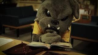 Charlie the Bulldog tries DND