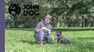 Szukanie zaginionych skarbów – TRENING – John Dog