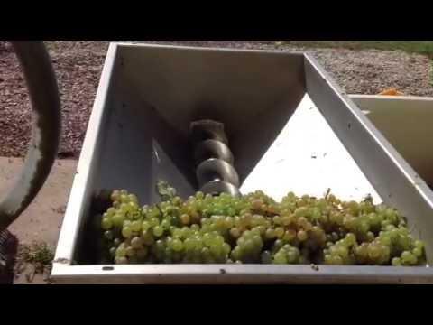 Електрическа гроздомелачка ронкачка с помпа GRIFO DVEP 20.18 #u6sAJ45yylQ