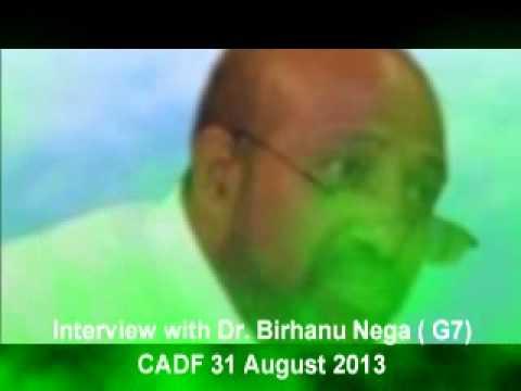 Interview with Dr Birhanu Nega  31 August 2013 G7) ECADF