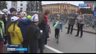 видео Экономика велосипедных краж